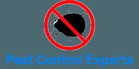 Pest Control Experts Singapore
